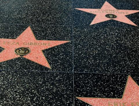 celebrity-contributions